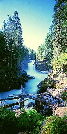 Silver Falls on the Ohanapecosh River along the Silver Falls Trail at Mount Rainier National Park in Washington • photo: Jeff Soderquist on Flickr