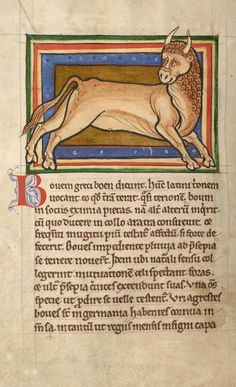 Bullock | Bestiary | England, possibly in Lincoln or York | ca. 1185 | The Morgan Library & Museum