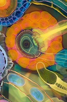 Bruce Riley   Vertical Labyrinth Chakra (detail)