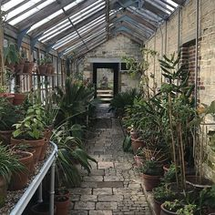 An early peek at The wonderful greenhouse and gardens at Parham House and Gardens, in Sussex.