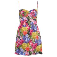 Topshop Photographic Corset Dress 10 38 Floral Rose Pint Cup Bustier Style New