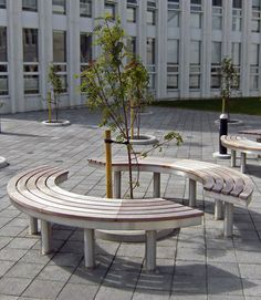 Everything you need to know about our Access TREE Bench. Helping you choose the right products for your project - view dimensions, photos and more