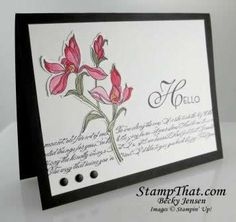 Backyard Basics from Stampin' Up!