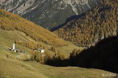 #Livigno, #valfedria, #amazingLivigno autumn landscape Pedestrian, Hotel Offers, Rooftop, Terrace, Skiing, Autumn, Landscape, Park, Amazing
