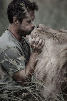 kevin richardson wildlife sanctuary in the outskirts of pretoria - lion aslan