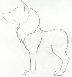 How to draw a wolf step 5 by Sonea Delunaxx