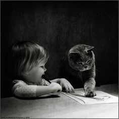 """""""Let me show you how it's done."""" Love this cat's face; so mellow and wise looking."""