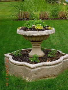 Old water fountain I turned into a planter
