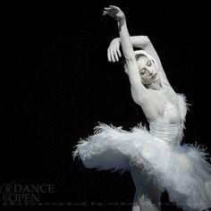 "Irma Nioradze, ""The Dying Swan"", Mariinsky Ballet at Dance Open Ballet Festival, Saint Petersburg, Russia (April, 2013)"