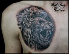 Lion Tattoos On Chest Lion Chest Tattoo, Cat Tattoo, Picture Tattoos, Cool Tattoos, Awesome Tattoos, Roaring Lion Tattoo, Tattoo 2015, Lion Tattoo Design, Collars For Women