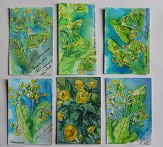 Keiu Kuresaar: maalid ja joonistused, watercolor postcards flowers globe flowers and cowslips