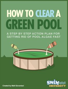 With a little work and these easy steps, you can easily clear a green pool in 5 days or less.