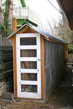 Talk of Tomatoes - chicken coop!