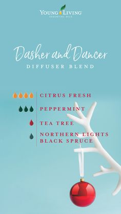If a sleigh ride with Santa is on your bucket list, you'll love this seasonal Dasher and Dancer diffuser recipe. The smells of citrus, tea tree, and spruce with a dash of peppermint will have you feeling like Kris Kringle's co-pilot on Christmas Eve. Essential Oils Guide, Essential Oil Uses, Young Living Oils, Young Living Essential Oils, Essential Oils Christmas, Essential Oil Combinations, Aromatherapy Oils, Yl Oils, Aromatherapy Recipes