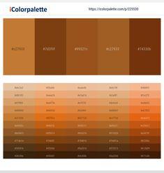 Beige Color Palette, Orange Color Palettes, Orange Color Shades, Hex Color Codes, Color Card, Pantone Color, Warm Colors, Color Inspiration, Terracotta