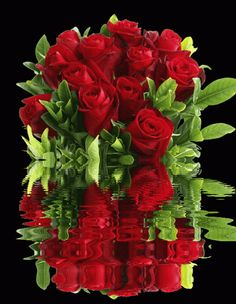 Good Morning: Red Roses and Bouquets For The Weekend Gifs, Red Flowers, Red Roses, Good Night My Friend, Welcome Pictures, Philosophy Of Education, Flower Frame, Beautiful Roses, Wallpaper Backgrounds