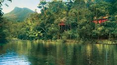 Breathtaking Silky Oaks Lodge-This Resort combines modern design and simple sophistication, where the sights and sounds on the rainforest encompass you. Fifty fashionable Treehouses and Riverhouses each one possess wide verandahs and spa baths.