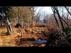 Ponds - Walking Tour of pond systems in a small food forest. Excellent Video!