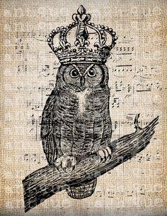 Antique+Crown+Bird+Owl+Music+Digital+Download+by+AntiqueGraphique,+$1.00