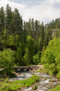 Spearfish Canyon, Black Hills National Forest, Spearfish, South Dakota