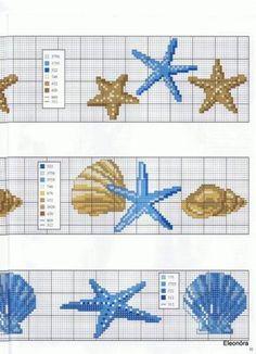conchiglie e stelle marine