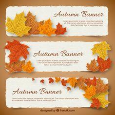 Bandeiras do outono Vetor grátis