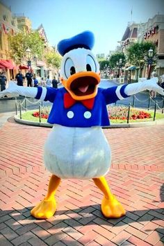 Donald Duck's 'Thank-God-It's-Friday' pose. Happy weekend everyone!