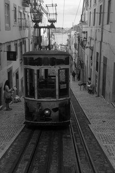 Oncoming Lisbon Tram - null