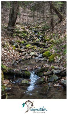 Oil Creek - Creek www.nicdreamcatcher.com  ©Nicole Iagnemma