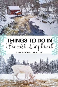 Things to do in Ruka Kuusamo, Finnish Lapland, Finland. From reindeer to skiing, snow-shoeing and ice-climbing. It's a winter wonderland. Europe Travel Tips, European Travel, Travel Destinations, Travel Hacks, Holiday Destinations, Italy Travel, Travel Guides, Cool Places To Visit, Places To Travel