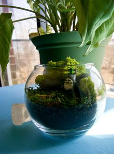 This is actually a super cute #geek decorating idea. A Totoro Terrarium Pocket Monster Moss by Mossoid, $15.00