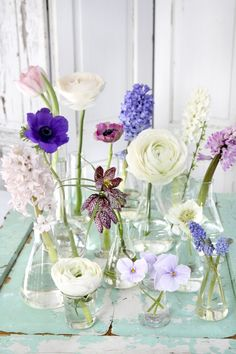A flower shower on the table - # flower shower # table .- A flower shower on the table – # flower shower # the table # on - Winter Flower Arrangements, Beautiful Flower Arrangements, Floral Arrangements, Beautiful Flowers, Flowers In Jars, Table Flowers, Fresh Flowers, Spring Flowers, Spring Blooms