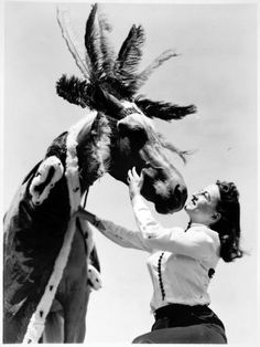 A woman putting a feathered headdress on a horse at the San Diego County Fair in 1939.
