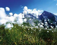 Zillertal valley