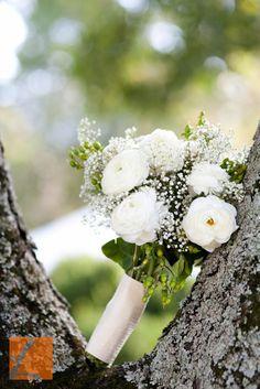Flowers in season october wedding stuff pinterest flowers flowers in season october wedding stuff pinterest flowers wedding and weddings mightylinksfo