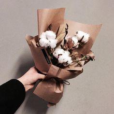 #vanessflower #vaness #flower #florist #flowershop #handtied #flowergram #flowerlesson #flowerclass #바네스 #플라워 #바네스플라워 #플라워카페 #플로리스트 #원데이클래스 #플로리스트학원 #화훼장식기능사 #플라워레슨 #플라워아카데미 #꽃스타그램. . . #꽃모닝 #목화 . . 귀여운 솜덩어리 ⛄️