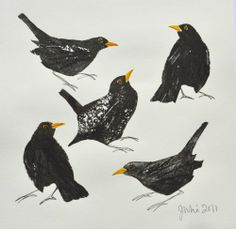 red hen originals, potato print, printmaking, natural, blackbird, art, illustration, design, birds