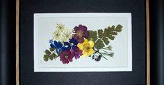 Garden Memories: Pressed Flower Creations