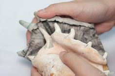 Make a Papier Mache Seashell Step 7.jpg