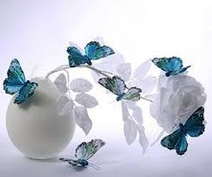 Image result for images of flowers and butterflies