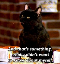 Sabrina, The Teenage Witch #Salem