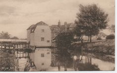 Wye Mill Kent - Rare Vintage Friths Real Photograph Postcard 1908 | eBay