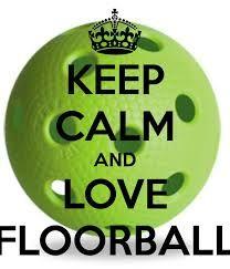 Bildresultat för floorball