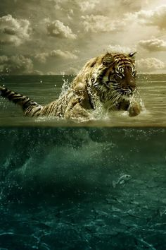 Swimming Tiger painting