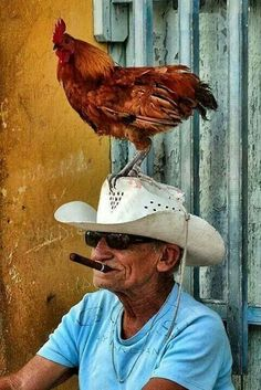 Cuba, Old man with his friend..
