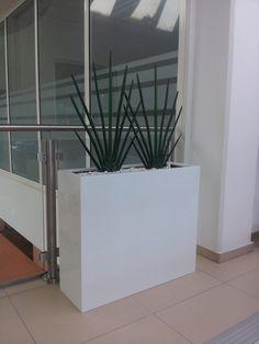 Luxusní bílý květináč Bmw, Plants, Plant, Planets