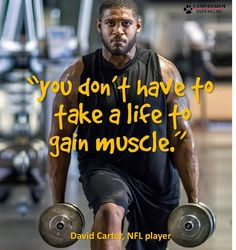 you don't have to take a life to gain muscle ~ courtesy David Carter, NFL player #vegan #eatingyoualive