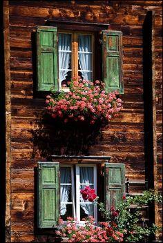 crescentmoon06: Typical swiss windows By: Vincent Bourrut