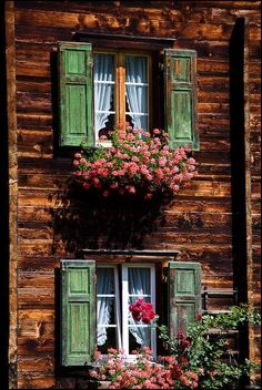 crescentmoon06:  Typical swiss windows By: Vincent Bourrut