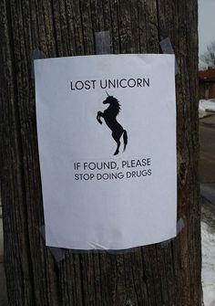 Someone Find It Please // funny pictures - funny photos - funny images - funny pics - funny quotes - Funny Images, Funny Photos, Chasing Unicorns, Friday Pictures, Friday Humor, Funny Friday, Funny Signs, Just For Laughs, Funny Fails